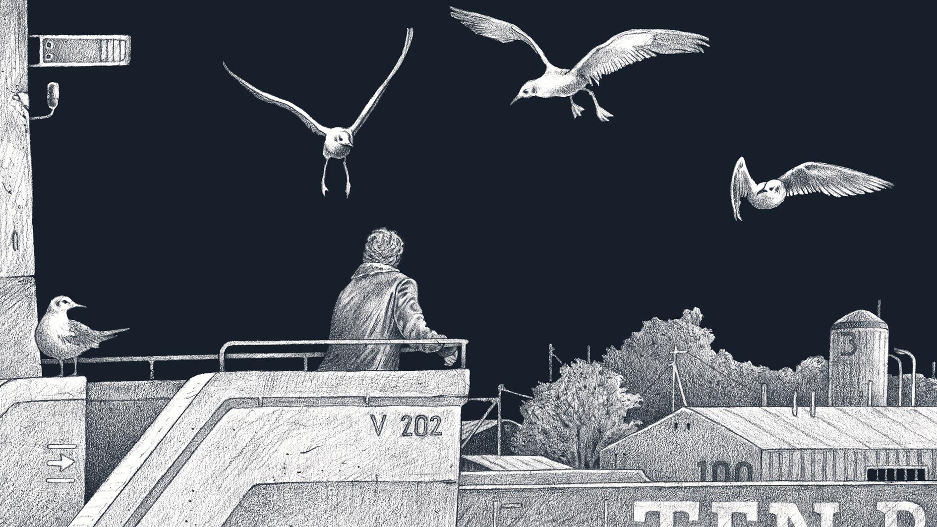 Die Nachtwanderin (Box), Headerbild